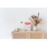 7 aliments précieux, de France Guillain